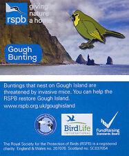 RSPB Pin Badge | Gough Bunting | GNaH Illustrated card [01217]