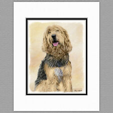 Otterhound Dog Original Art Print 8x10 Matted to 11x14