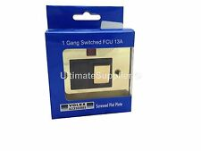 Switched Switch Spur Fused Socket Light Neon Polished Brass Gold Mirr Flat Plate