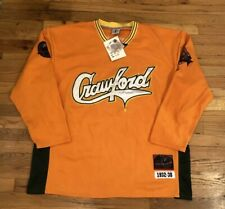 NEW-Pittsburgh Crawfords Professional Negro Leagues Baseball Jersey Men's 4XL