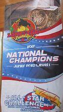 Lone star Round Up National Champions Junior Prep All Star Challenge flag banner