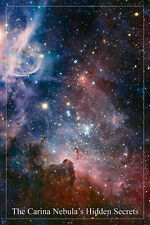 the Carina nebula's HIDDEN SECRETS Hubble SPACE IMAGE poster 24x36 STARS
