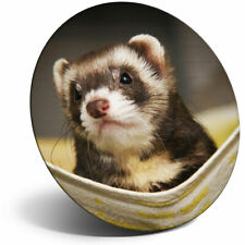 Awesome Fridge Magnet - Ferret Hammock Pet Rodent Animal Cool Gift #16329
