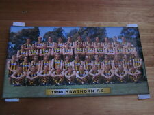 HAWTHORN TEAM PHOTO OFFICIAL 1998 BRAND NEW IN SEALED ENVELOPE