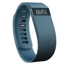 Fitbit Charge Slate Wireless Activity Fitness and Sleep Tracker Wristband Large