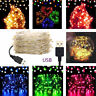 USB Plug In 100 LED DIY Micro Copper Wire String Lights Party Static Fairy Light