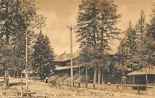 The Lodge, Cloudcroft, New Mexico ca 1910s Albertype Vintage Postcard