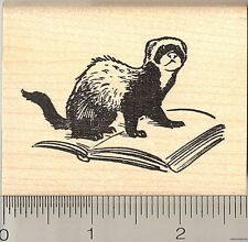 Ferret with Book rubber stamp H10917 WM