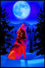 Autumn Wolf Blacklight Poster 23 x 35