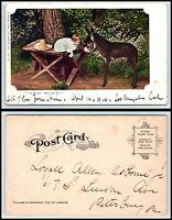 Vintage Postcard - Donkey, Mule, Burro, Baby Talking To F39