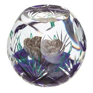 Caithness Glass L20011 Hot House Collection Antiquity Paperweight