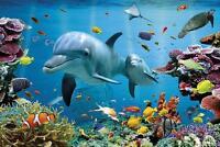 Tropical Underwater Ocean - Maxi Poster 61cm x 91.5cm (new & sealed)