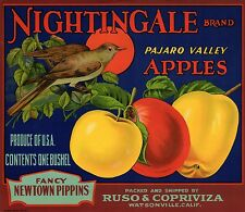 "RARE OLD ORIGINAL 1920'S LITHO ""NIGHTINGALE BRAND"" BOX LABEL ART WATSONVILLE CA"