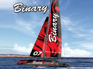 Joysway BINARY V2 Catermaran Sailboat 2.4GHz RTR RC Sailing Yacht (28 Inch High)