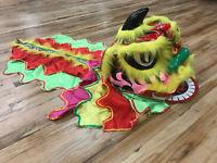 Colorful Lion Dance Costume children Wool Chinese Mascot Kid Dress Folk Art Gift