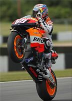 Nicky Hayden - Repsol Honda 2008 - A1/A2/A3/A4 Photo/Poster Print