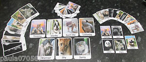 NEW **Emotions / feelings cards with wild animals** Autism ~ASD~SEN~Home~School