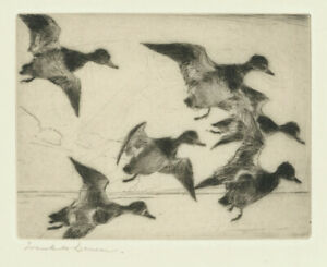An original pencil signed Frank Benson etching, Bunch of Bluebills, 1931