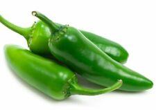 25+ Jalapeno Pepper Seeds NON-GMO Organically Grown