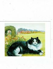 POST CARDS CATS ART CARD BY LOUIS WAIN FROM THE CHRIS BEETLES COLLECTION