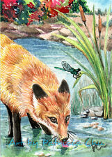 """ACEO LE Art Card Print 2.5""""x3.5"""" """" Fox Thirsty """" Animal Art by Patricia"""