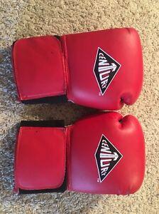 Red Century Boxing Gloves Kickboxing Training Sparring 12oz 12 Oz