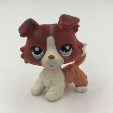 Littlest Pet Shop Brown Orange Collie Dog Puppy LPS #1542 Rare Figure Child Toys