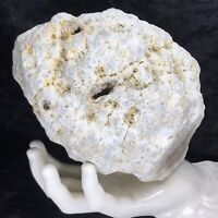 "6""+ Large Unopened GEODE Rattler Crystal Kentucky Break Your Own Quartz 4.5Lb"