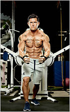 NFL Steve Weatherford Muscles Gym Bodybuilding Large Poster Art Print 91x61 cm