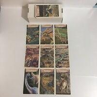 "LOT OF 35 DINOSAURS FACT CARDS DINOSAUR ARTWORK 5""x3"" LARGE FACTOID CARDS (UGC)"