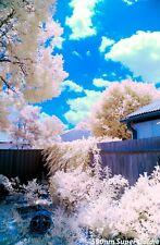 Canon EOS DSLR Infrared IR590nm 650nm 665nm 720nm Camera Conversion Service