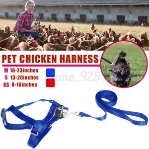 Chicken Harness Hen Duck Goose Pet Adjustable Breathable Straps Bright Fun Vest