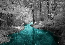 An Ice Storm in August? - Infrared Photography - Fine-Art Print / Photograph