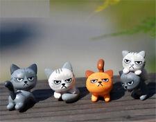 New listing Miniature Dollhouse Garden Craft Fairy Bonsai Decor Angry Cat Kitten 1Pc☆
