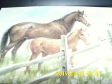 25 Vintage Red Farm Studio horses in pasture Postcards unused