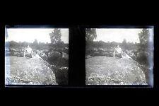 Forêt de Fontainebleau Plaque stéréo NÉGATIF 45x107mm ca 1920