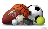 Vinyl Wall Decal sticker, Large 18 X 24 inches, Sports Gear, Full Color