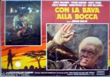 fotobusta 1976 CON LA BAVA ALLA BOCCA-James Faulker-Trevor Howard- 1