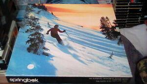 vintage 1980s Springbok Jigsaw Puzzle Freedom's Trail 20 x 20 snow skiing 500 pc