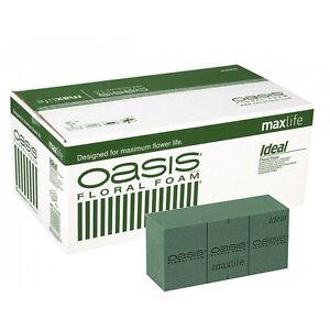 Genuine Oasis Wet Floral Foam - Premium quality - Box of 20