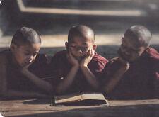 Postkarte: kleine buddhistische Mönche lesen - little Buddhist mons read