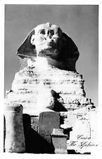 Egypt Cairo The Sphinx Statue