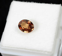 2.50 TCW. IF/VVS Natural Zircon-Imperial Champagne Master Cut Unheated Gemstone