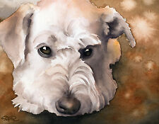 Schnoodle Art Print Watercolor Painting Dog 8 x 10 Signed by Artist Djr w/Coa