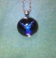 Vibrant Shimmery CAPRICORN Glass Dome Necklace Pendant Zodiac Horoscope Birthday