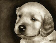 Golden Retriever Puppy note cards by watercolor artist Dj Rogers