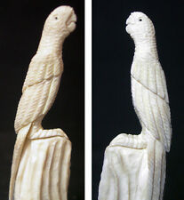Zuni Fetish - Parrot made from Antler by R. Najera of the Zuni