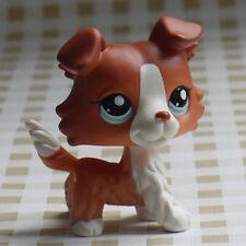 """LPS PRESCHOOL Littlest pet shop  #1542 caramel Collie Dog  FIGURE 2"""""""