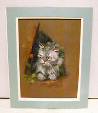 Doris Johnston Hays Artist Original Pastel Gray Persian Cat Unframed Painting