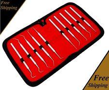 Dental Set Kit 10 Pcs Scaler Pick Tools Deep Cleaning Professional Oral Hygiene